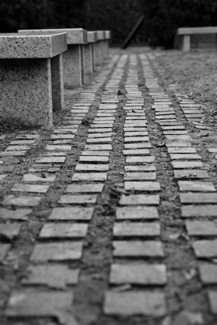 Walker Path