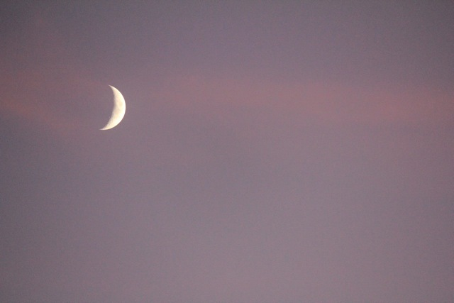 Cut Moon.