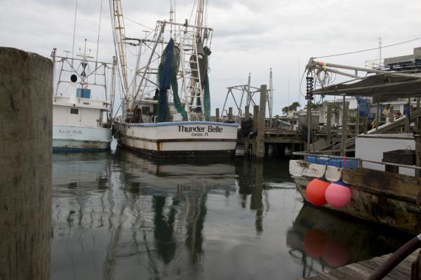 Cortez Fishing Boat