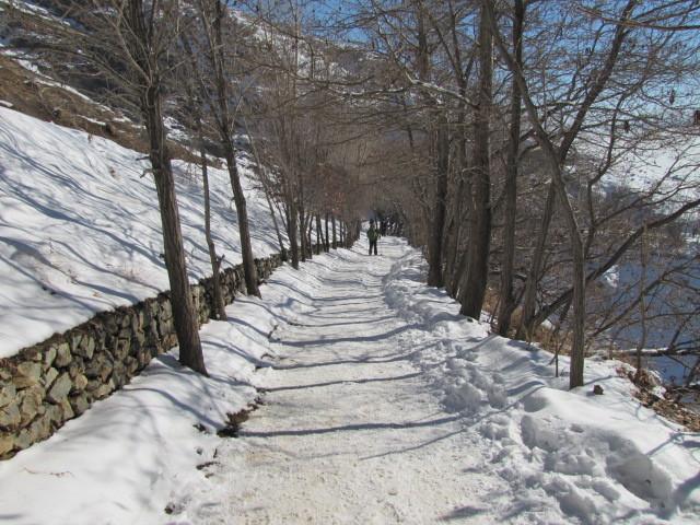 Mountain series   04