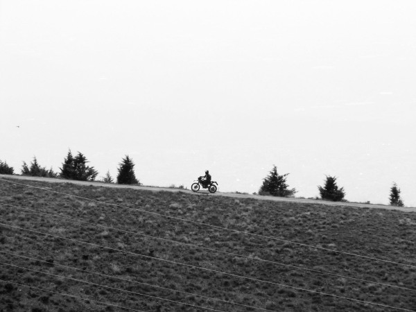 Man riding on nature ! 06