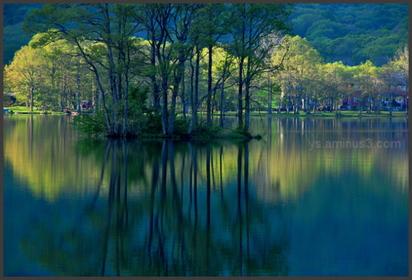 Quiet forest lakes.