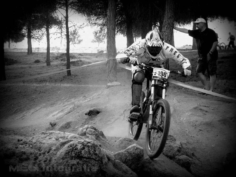 Bull Bikes DH
