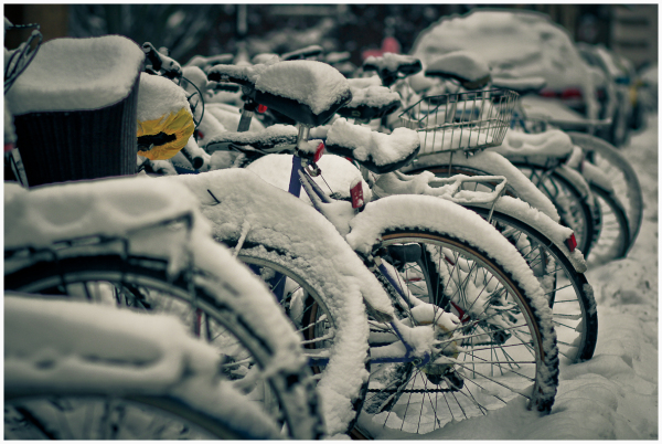 Bikes in the Snow