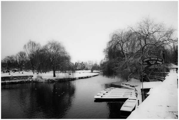 Winter Morning!