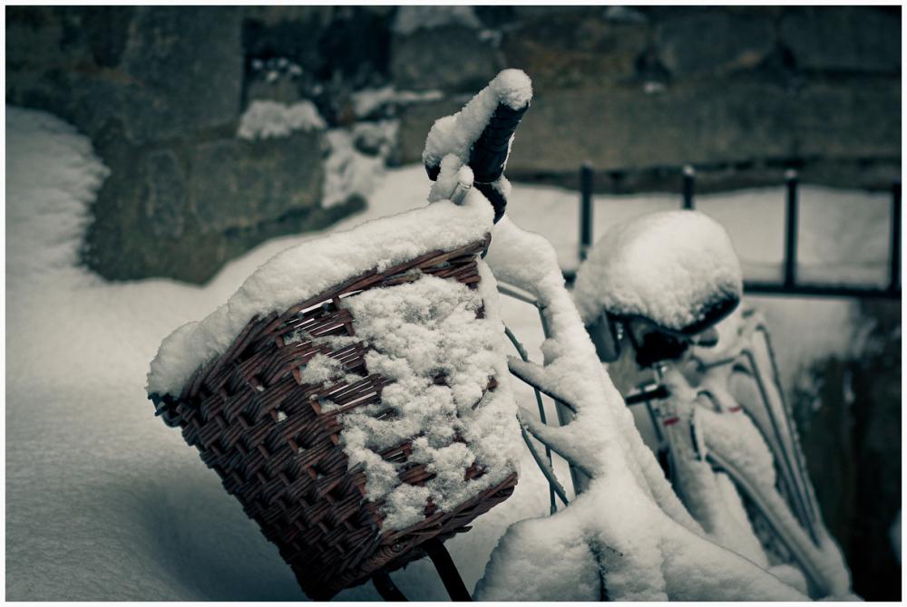 Winter snow!