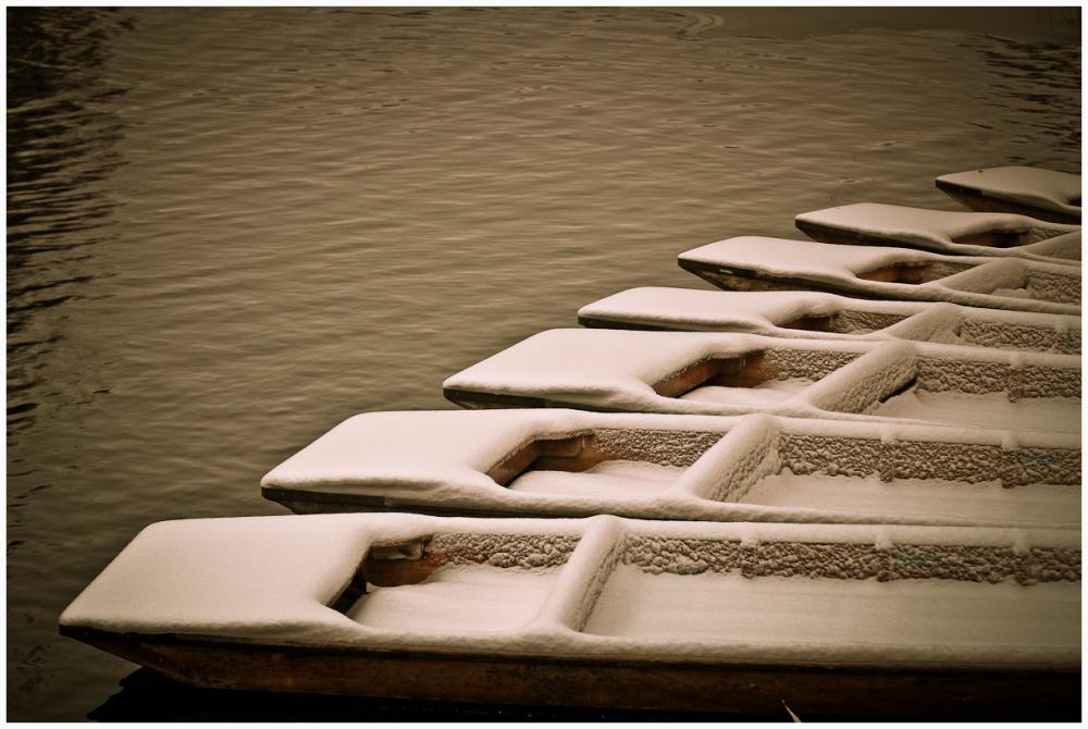 Snowy Punts
