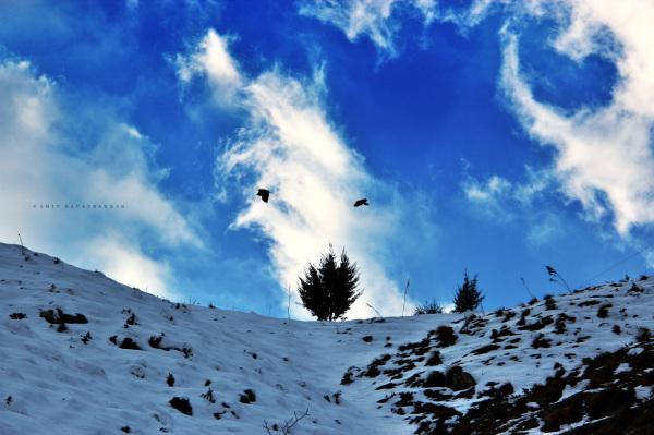 2st Sky Freedom  ...