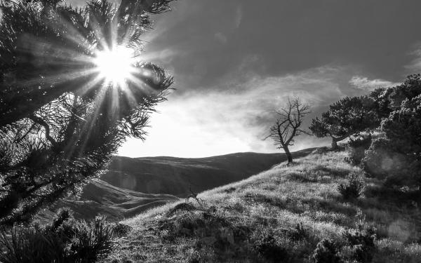 nature landcsape valldenuria BW
