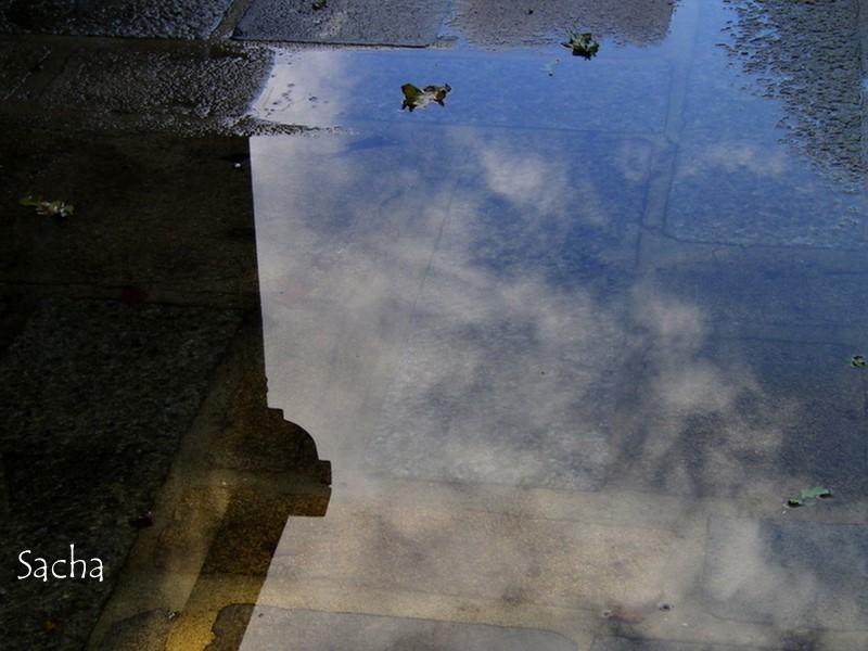 Flaque d'eau sous  le ciel d'hiver ...