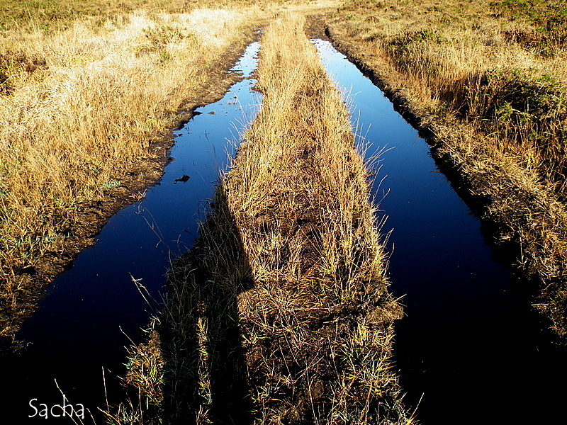 Chemin du Yeun Elez ... bretagne