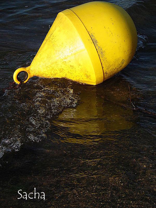 La bouée jaune  ...