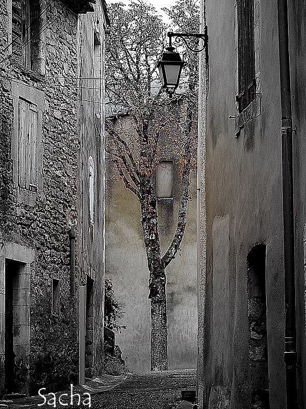 Ruelle à l'arbre ..village de Cereste provence