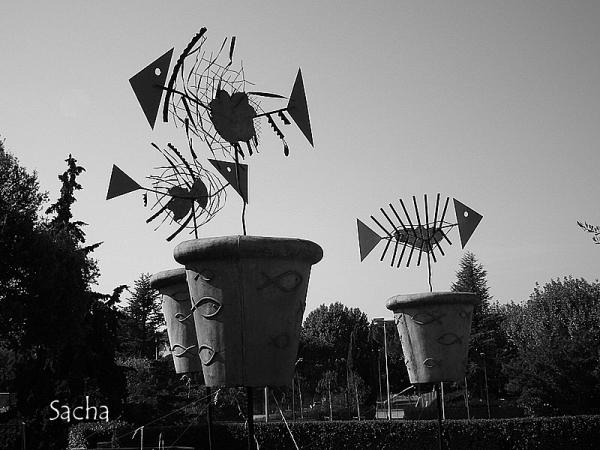 Poissons volants ! Vaison la Romaine Provence