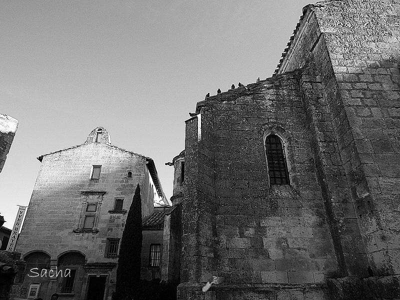 Musée Yves Brayer et église St Vincent