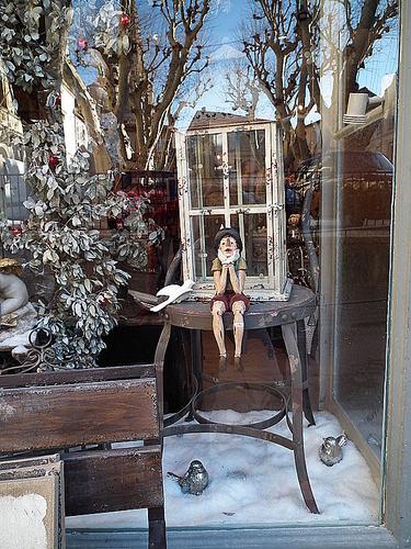 Vitrine St Rémy de Provence
