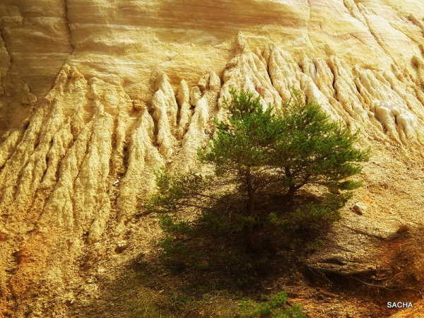 Détails sur la falaise d'ocre
