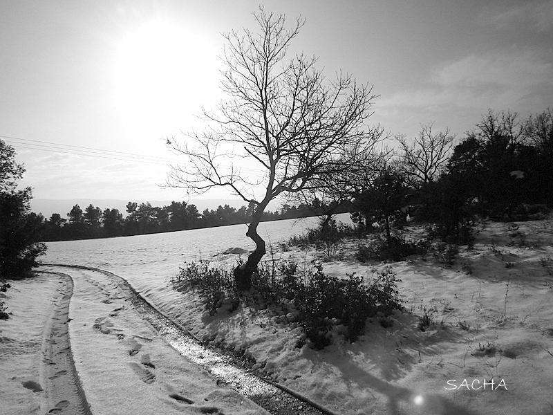 """Chemin du Mange-Tian en hiver """" Luberon """""""