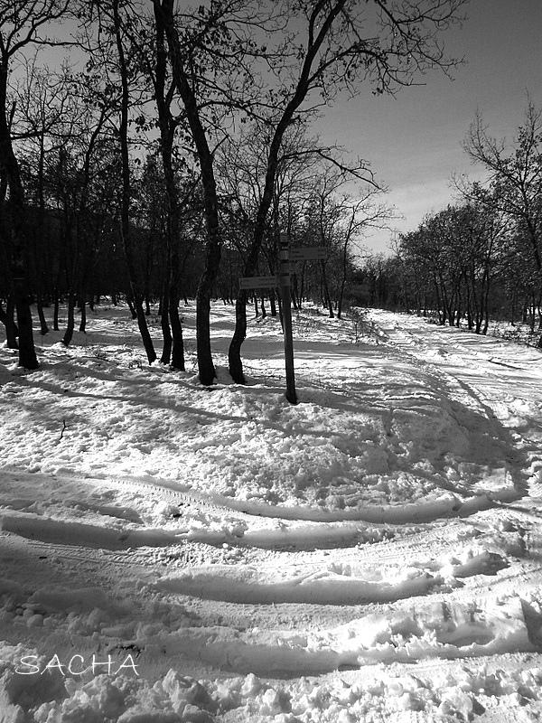 """Chemin de la Valmasque """" Luberon  en hiver """""""