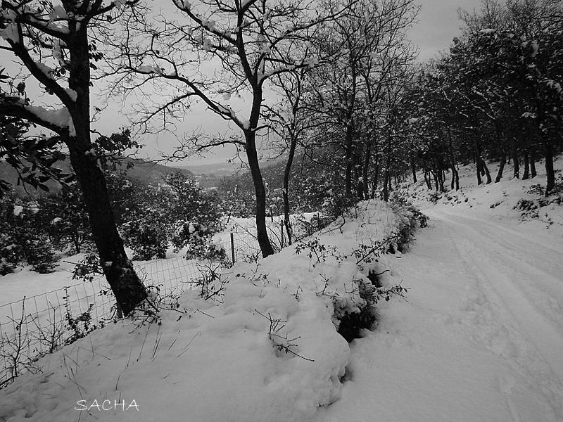 """La Druine """" chemin de la Valmasque"""