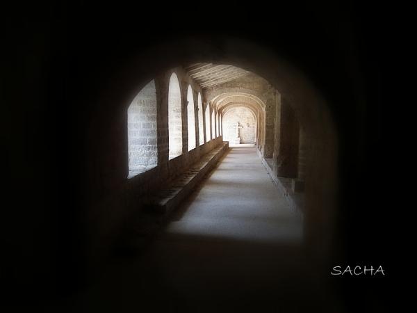Cloître Abbaye de Gellone #  3
