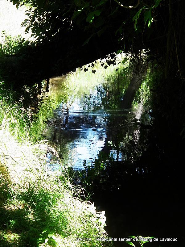 Ancien canal de Martigues