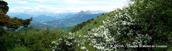 Du Mont Cousson ............