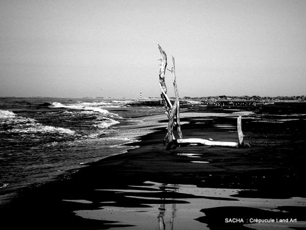 Land Art ,   Camargue  , plage de Piémanson