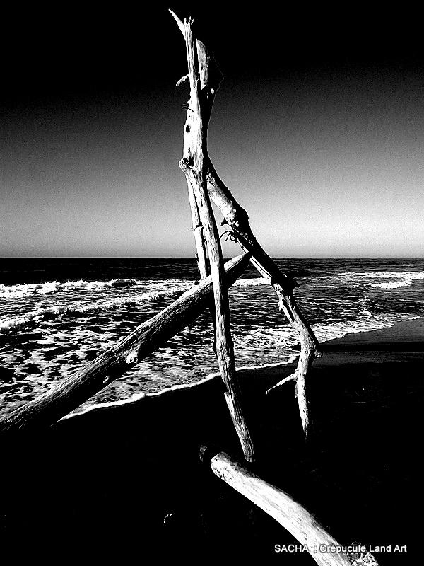 Land Art Camargue plage de Piémanson