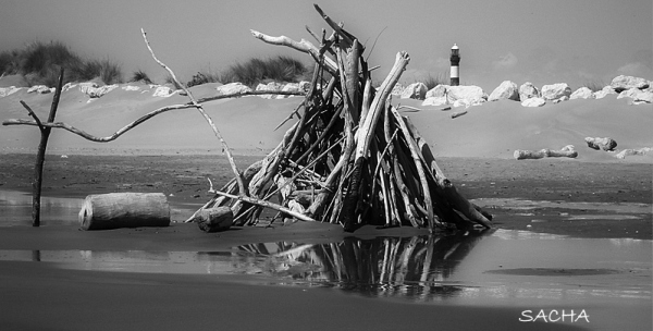 "Land Art et phare de Faraman "" Camargue """