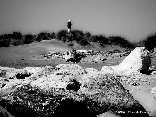 """Dunes , phare de Faraman """" Camargue """""""