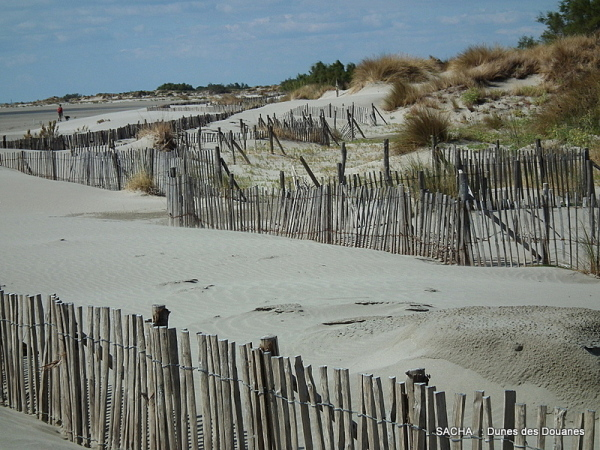 """Dunes """"  Digue à la mer """" Camargue"""