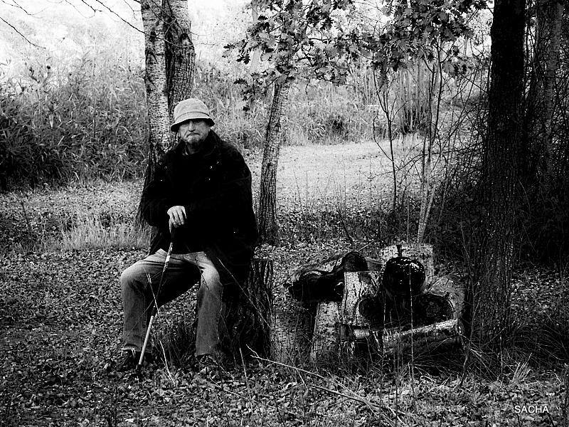 Homme assis  en bordure de bois