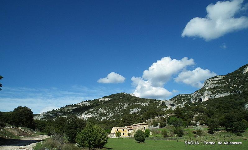 """Ferme du Vallon de Valescure """"Mts de Vaucluse """""""