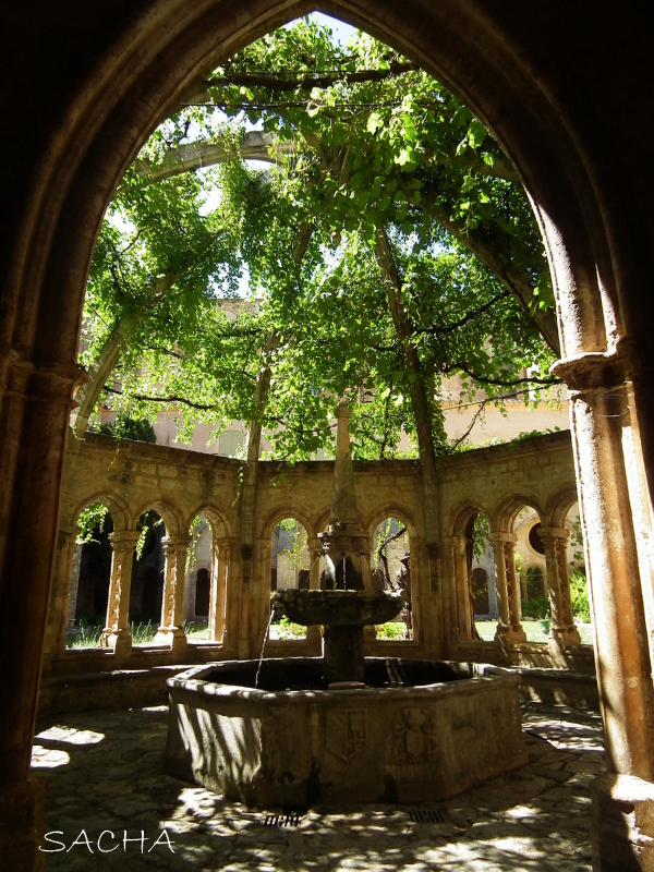 Fontaine Abbaye de Valmagne pays de Thau