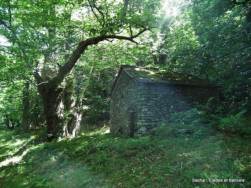 Clède forêt  Cévenole du Bougès