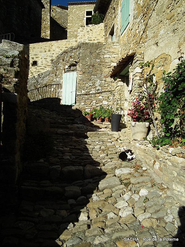 calade féline  St Montan Ardèche