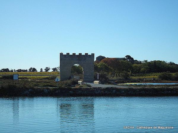 Porte de Maguelone ( marais et étangs)