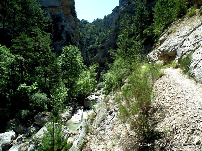 Chemin du Turquet Gorges de Trévans  04