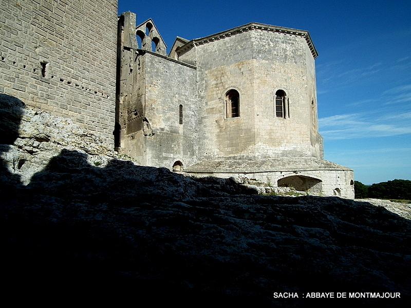 Abbaye de Montmajour  nécropole Arles  13
