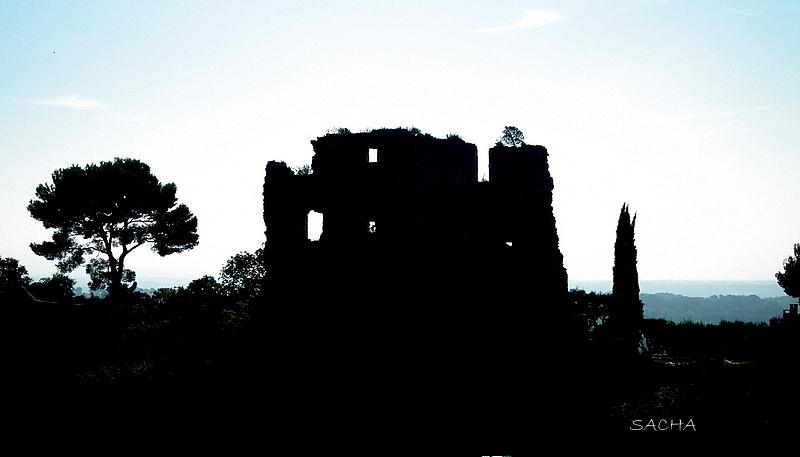 Contre-jour  château des Barons ( ruines )
