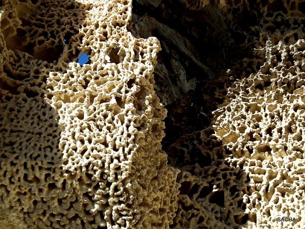 Dentelle de roche