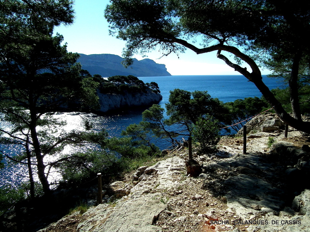 "Calanque de Port Pin "" Cassis """