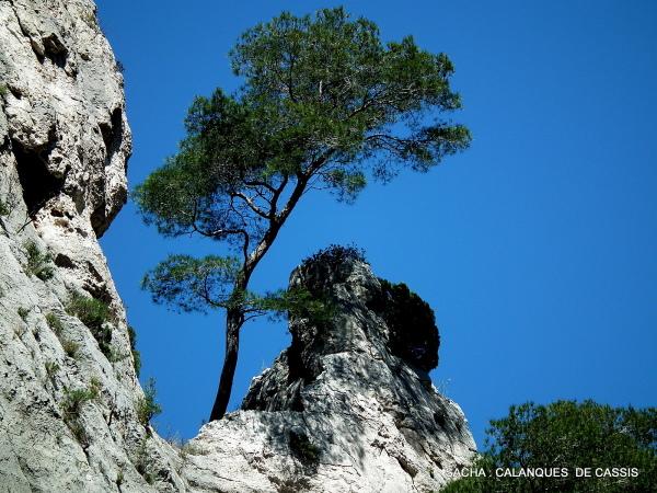 Roche vallon d'En Vau