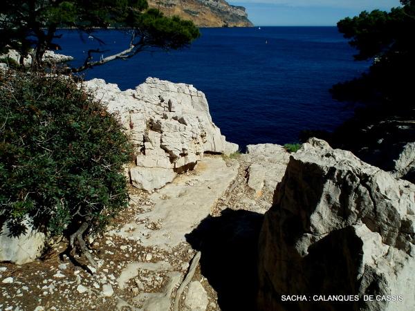 Narine de Neptune ( rocher )