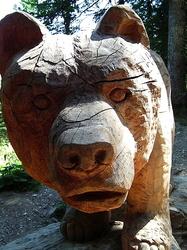 """Fontaine de l'Ours """" forêt de Boscodon """" 05"""""""