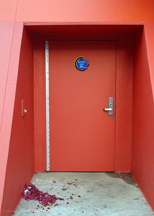 Interesting door in Disney World Florida, USA