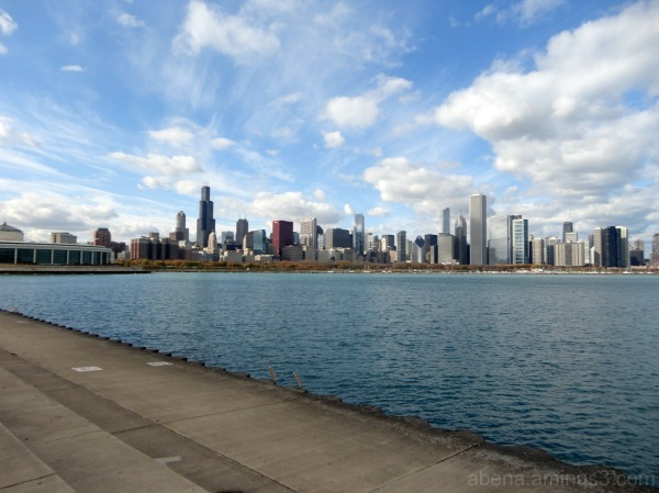Chicago #9