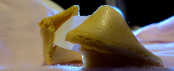 Fortune cookie dreams: pastime and certainty.