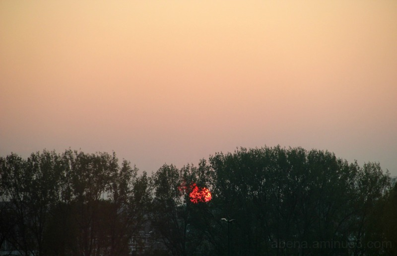Belgian Sunset